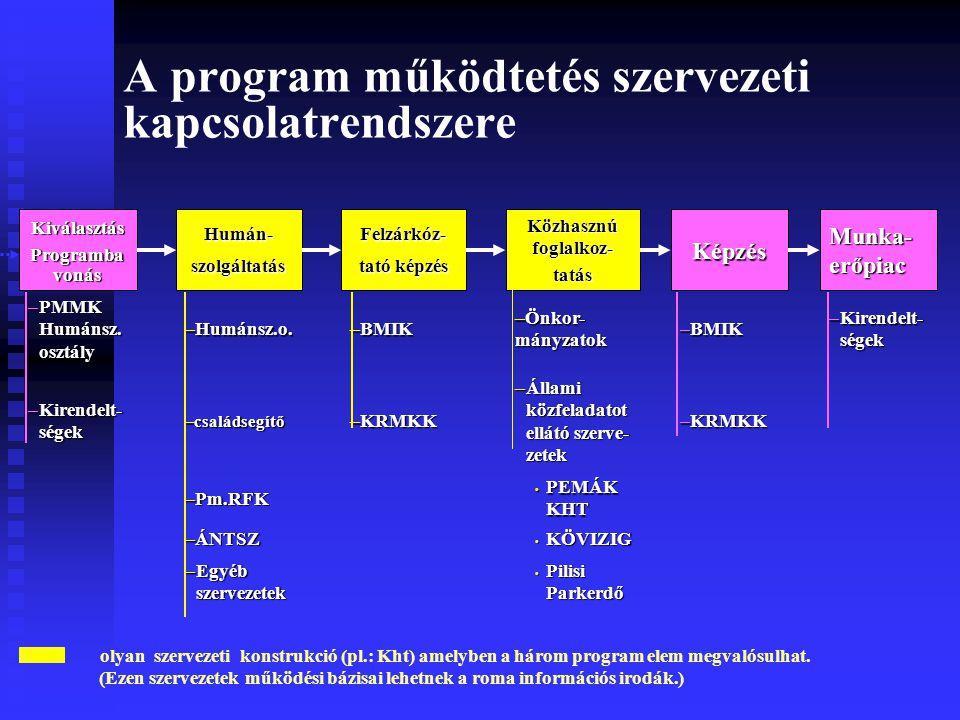 A program működtetés szervezeti kapcsolatrendszere olyan szervezeti konstrukció (pl.: Kht) amelyben a három program elem megvalósulhat.
