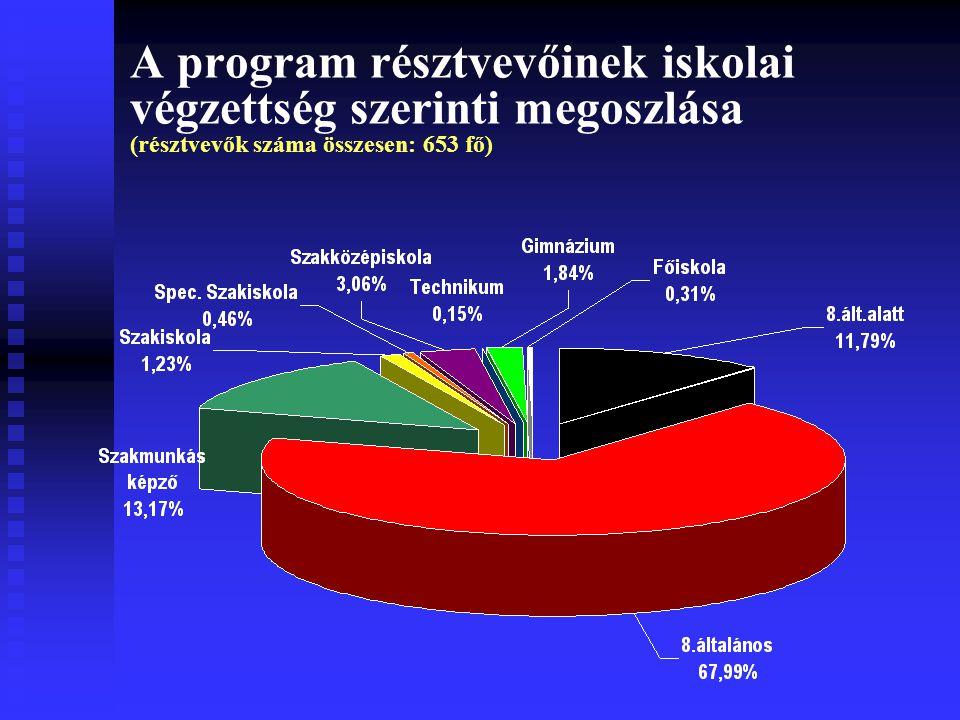 A program résztvevőinek iskolai végzettség szerinti megoszlása (résztvevők száma összesen: 653 fő)