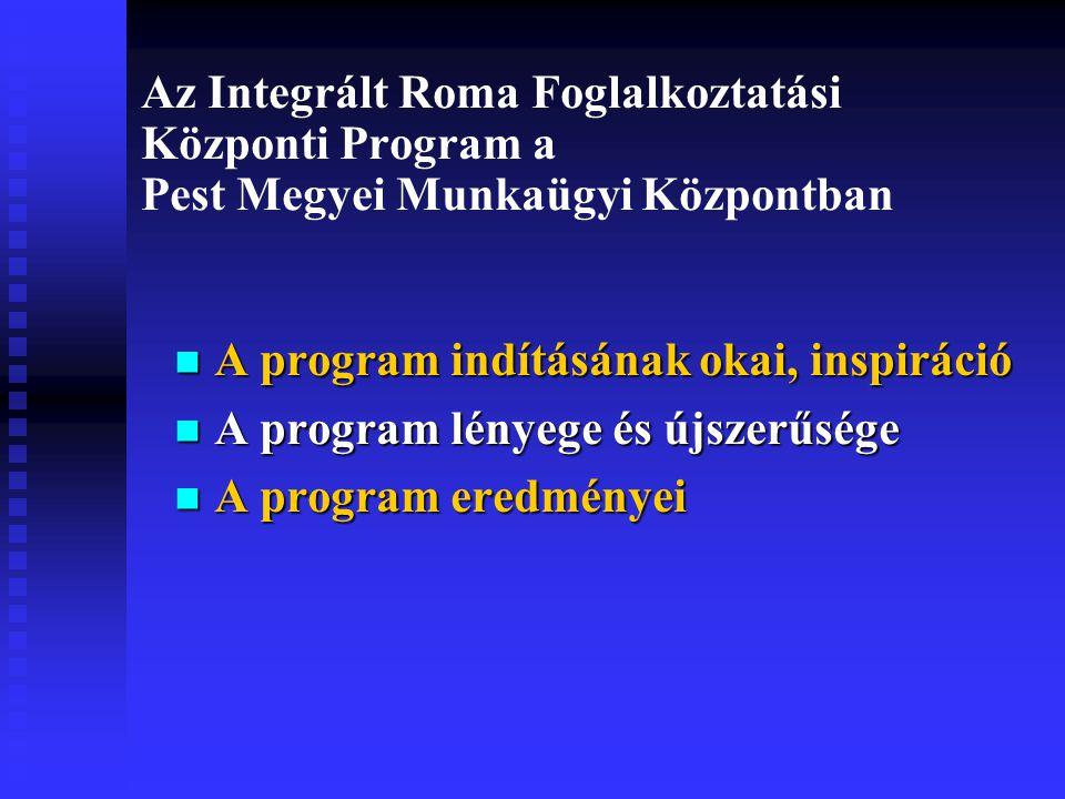 Az Integrált Roma Foglalkoztatási Központi Program a Pest Megyei Munkaügyi Központban A program indításának okai, inspiráció A program indításának okai, inspiráció A program lényege és újszerűsége A program lényege és újszerűsége A program eredményei A program eredményei