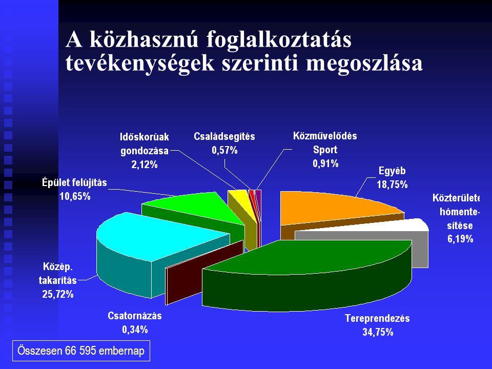 A közhasznú foglalkoztatás tevékenységek szerinti megoszlása Összesen 66 595 embernap
