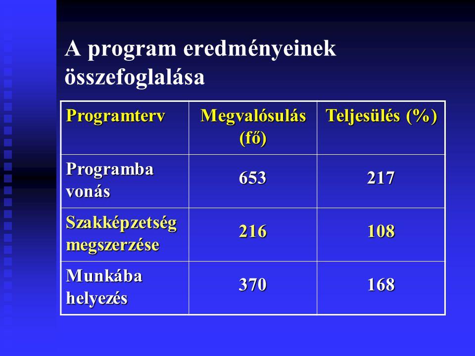 A program eredményeinek összefoglalása Programterv Megvalósulás (fő) Teljesülés (%) Programba vonás 653217 Szakképzetség megszerzése 216108 Munkába helyezés 370168