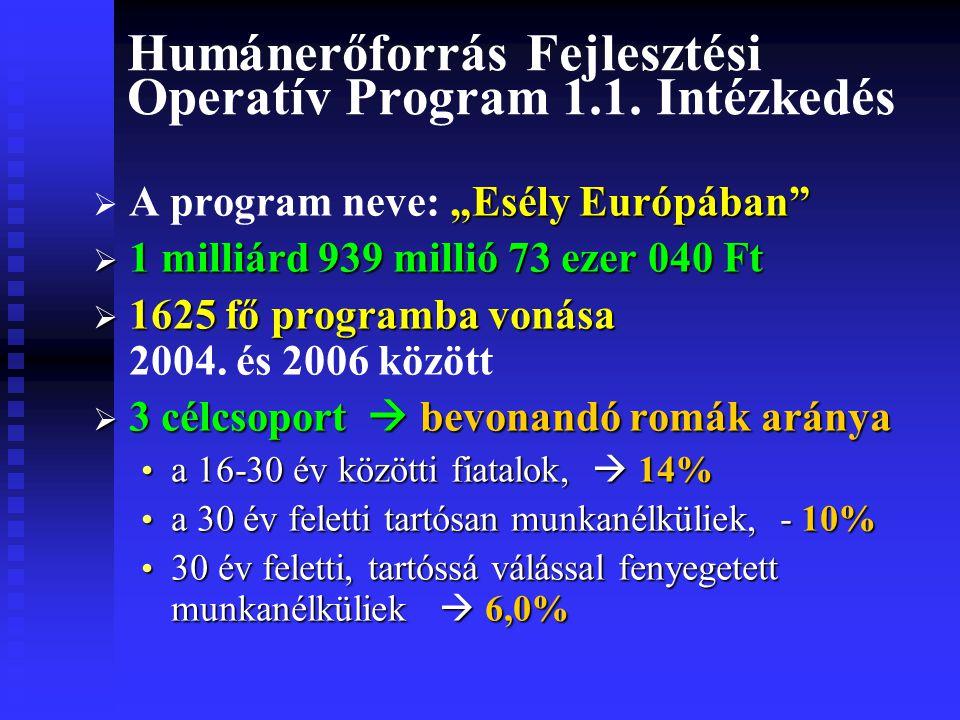 Humánerőforrás Fejlesztési Operatív Program 1.1.