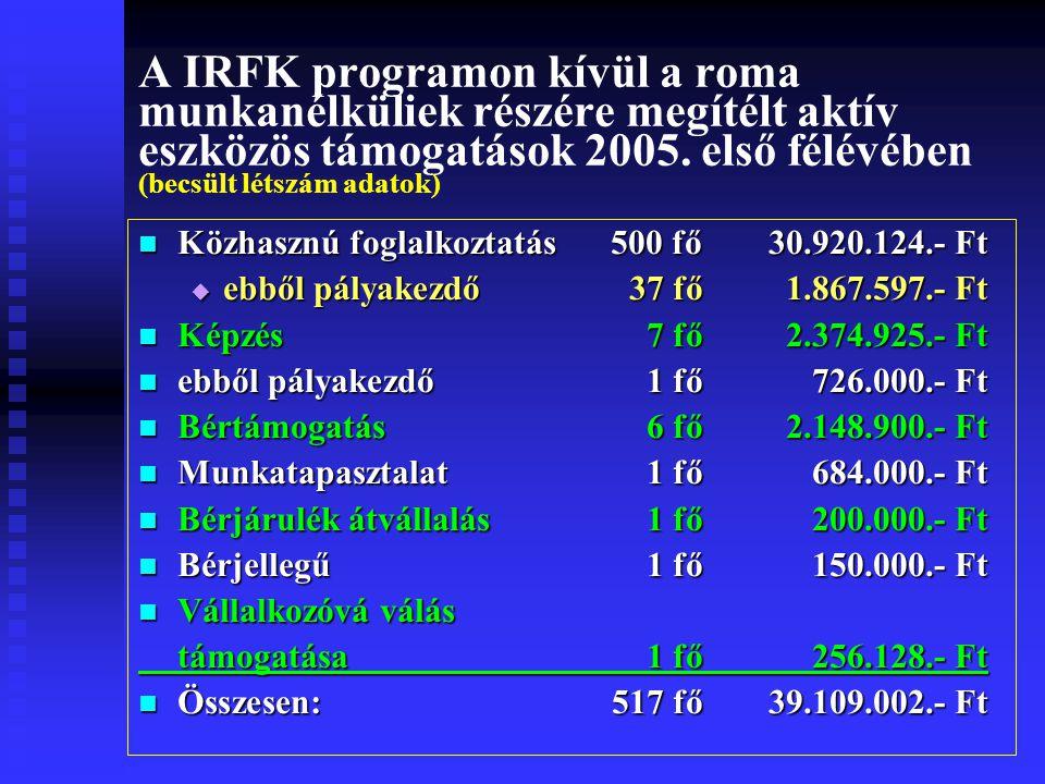 A IRFK programon kívül a roma munkanélküliek részére megítélt aktív eszközös támogatások 2005.