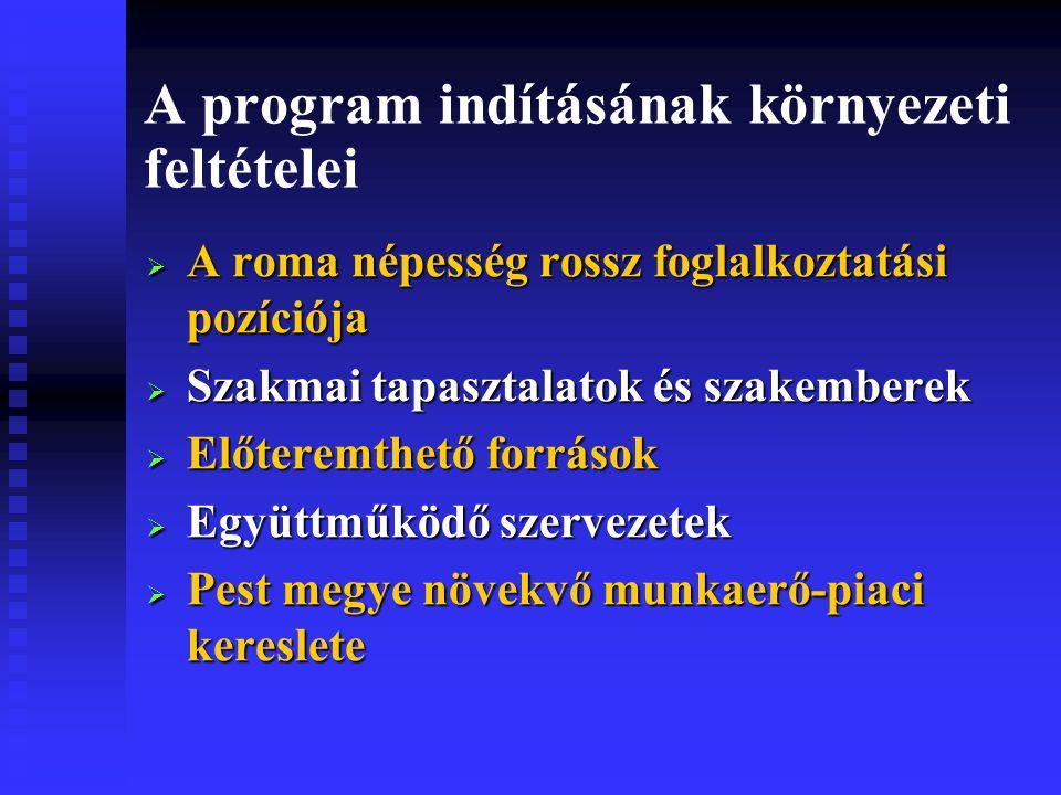 A program indításának környezeti feltételei  A roma népesség rossz foglalkoztatási pozíciója  Szakmai tapasztalatok és szakemberek  Előteremthető források  Együttműködő szervezetek  Pest megye növekvő munkaerő-piaci kereslete