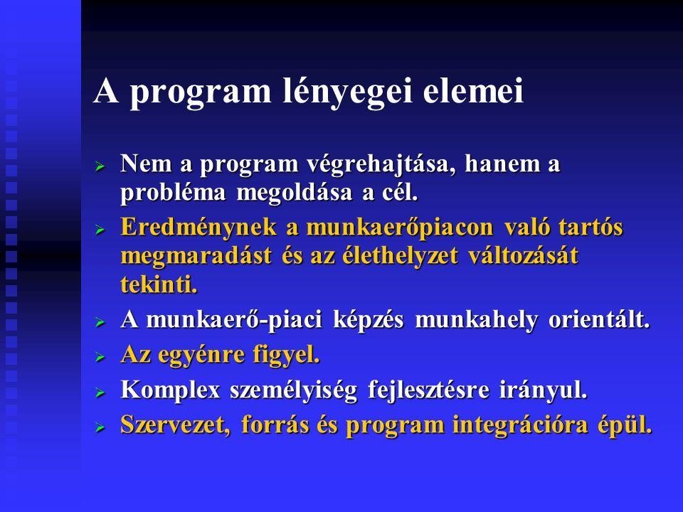 A program lényegei elemei  Nem a program végrehajtása, hanem a probléma megoldása a cél.
