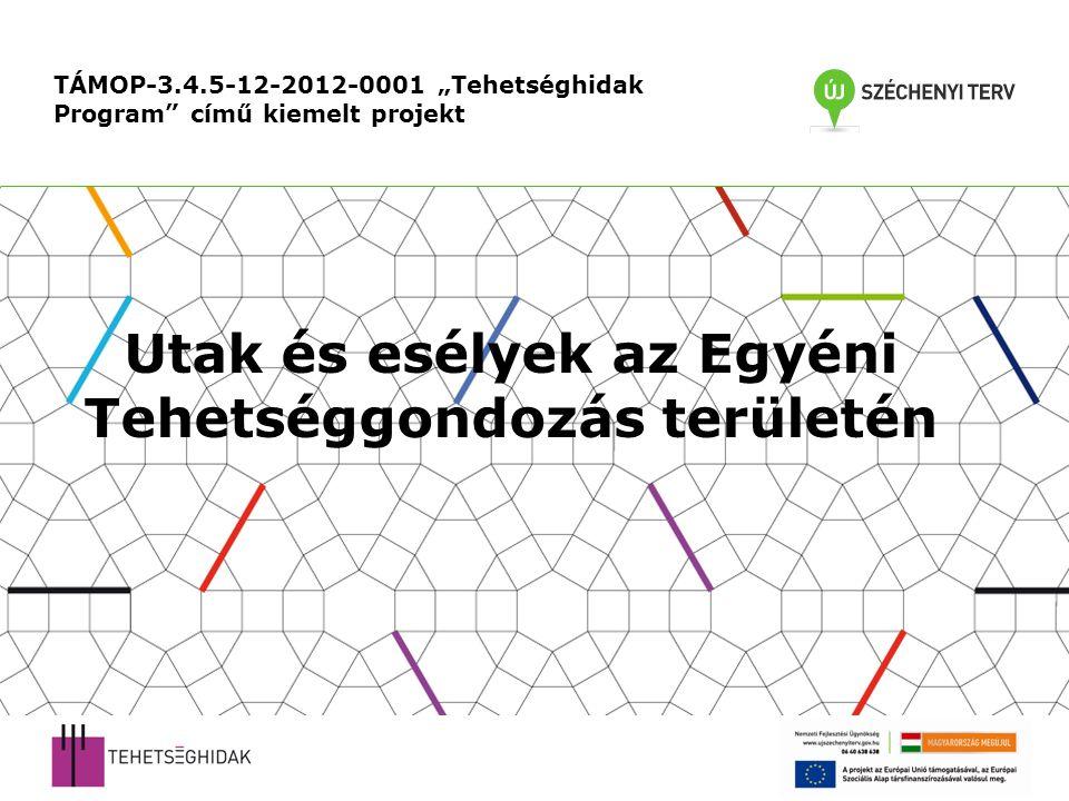 """TÁMOP-3.4.5-12-2012-0001 """"Tehetséghidak Program című kiemelt projekt Utak és esélyek az Egyéni Tehetséggondozás területén"""
