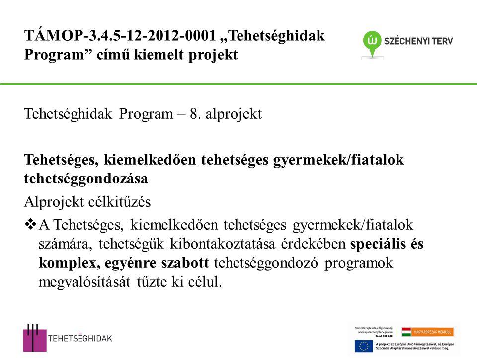 Tehetséghidak Program – 8.