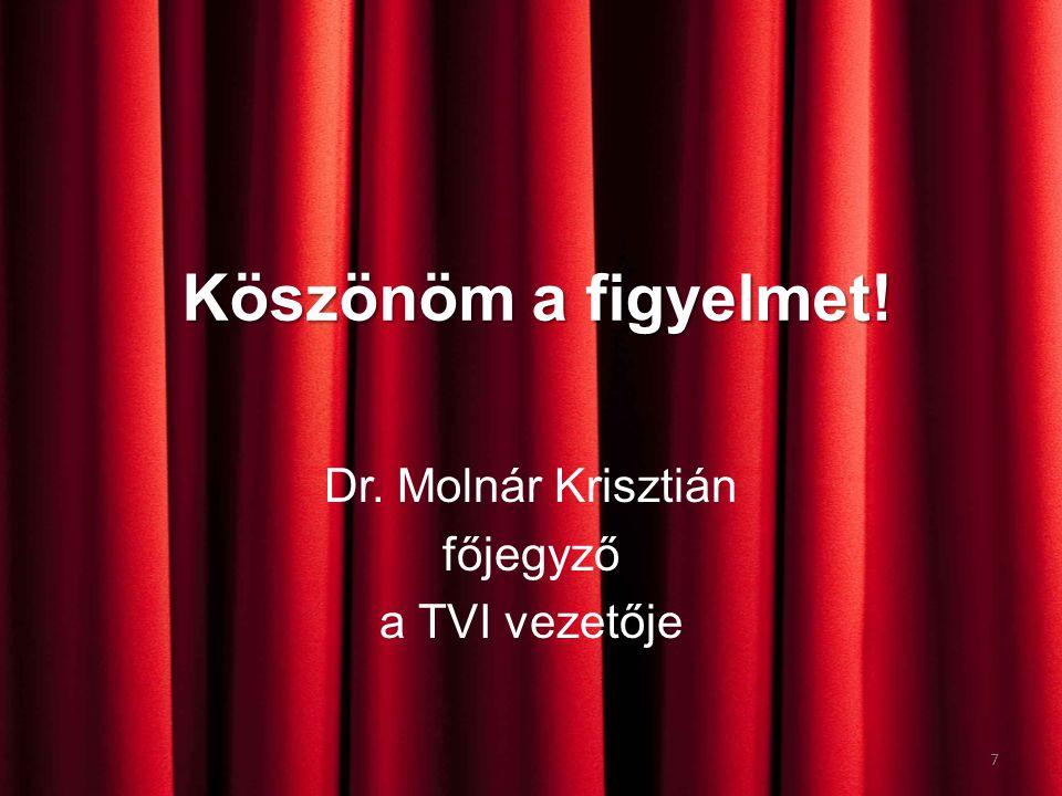 Köszönöm a figyelmet! Dr. Molnár Krisztián főjegyző a TVI vezetője 7