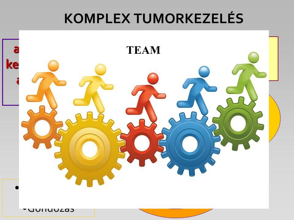 KOMPLEX TUMORKEZELÉS Sebészet Sugárterápia Kemoterápia Célzott specifikus terápia Diagnosztika Hisztológia Szupportáció Gondozás a KURATÍV kezelés ala