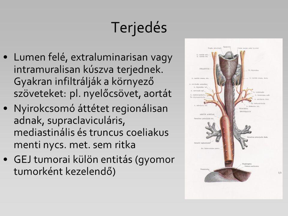 Terjedés Lumen felé, extraluminarisan vagy intramuralisan kúszva terjednek. Gyakran infiltrálják a környező szöveteket: pl. nyelőcsövet, aortát Nyirok
