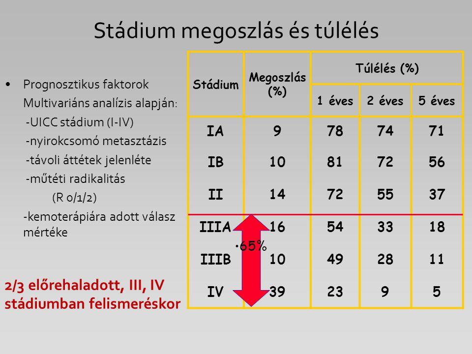 Stádium Megoszlás (%) Túlélés (%) 1 éves2 éves5 éves IA9787471 IB10817256 II14725537 IIIA16543318 IIIB10492811 IV392395 Prognosztikus faktorok Multiva