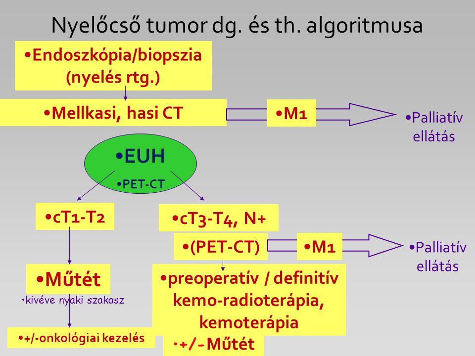 Nyelőcső tumor dg. és th. algoritmusa Endoszkópia/biopszia (nyelés rtg.) Mellkasi, hasi CT cT1-T2 preoperatív / definitív kemo-radioterápia, kemoteráp