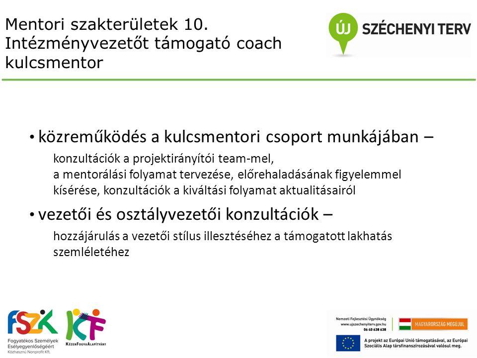 Mentori szakterületek 10. Intézményvezetőt támogató coach kulcsmentor közreműködés a kulcsmentori csoport munkájában – konzultációk a projektirányítói