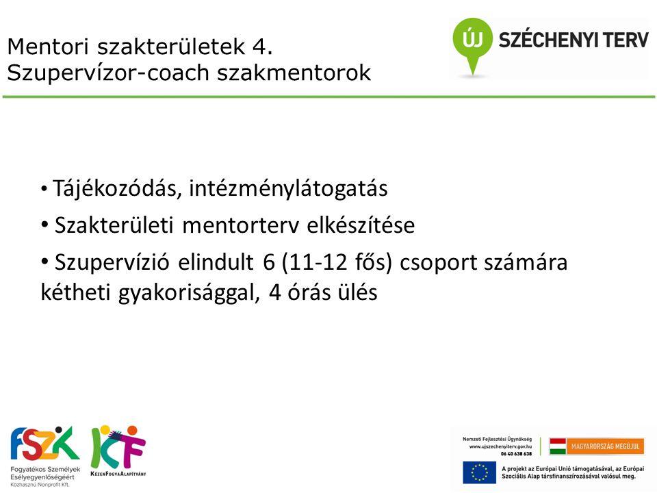 Mentori szakterületek 4. Szupervízor-coach szakmentorok Tájékozódás, intézménylátogatás Szakterületi mentorterv elkészítése Szupervízió elindult 6 (11