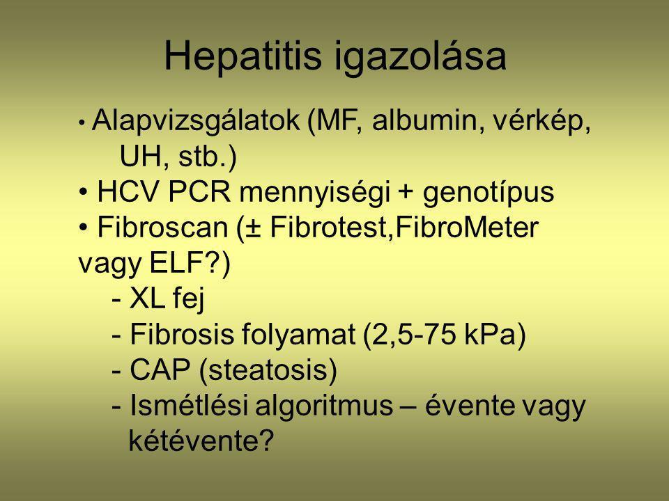 Hepatitis igazolása Alapvizsgálatok (MF, albumin, vérkép, UH, stb.) HCV PCR mennyiségi + genotípus Fibroscan (± Fibrotest,FibroMeter vagy ELF?) - XL f