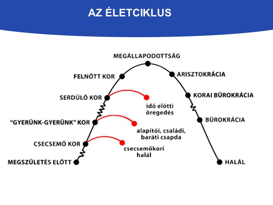 AZ ÉLETCIKLUS