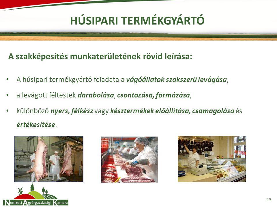 13 HÚSIPARI TERMÉKGYÁRTÓ A szakképesítés munkaterületének rövid leírása: A húsipari termékgyártó feladata a vágóállatok szakszerű levágása, a levágott