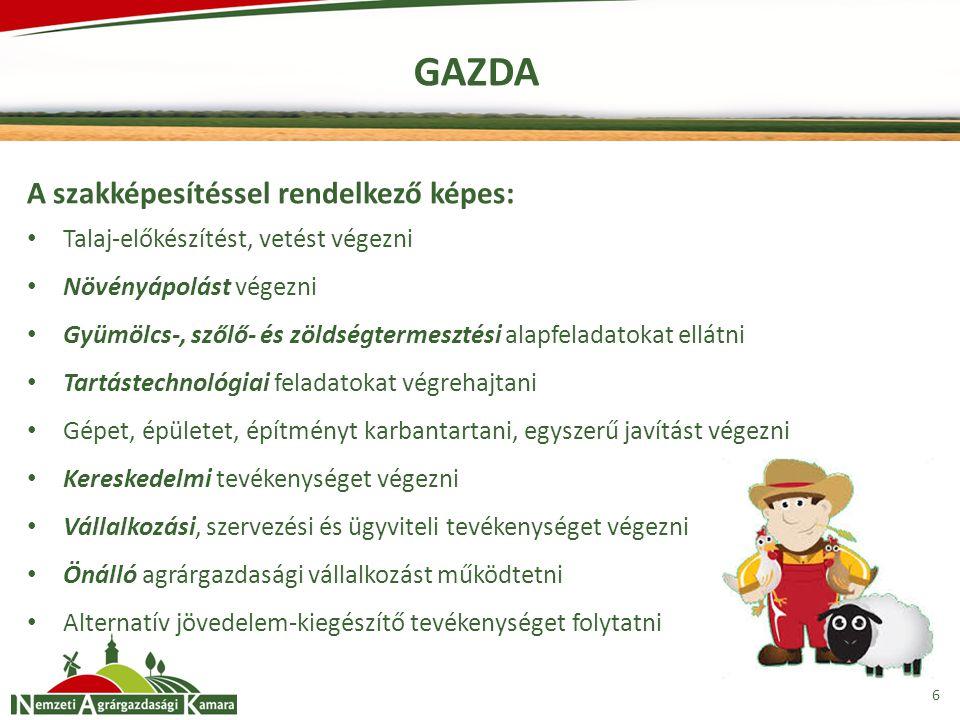 6 GAZDA A szakképesítéssel rendelkező képes: Talaj-előkészítést, vetést végezni Növényápolást végezni Gyümölcs-, szőlő- és zöldségtermesztési alapfela