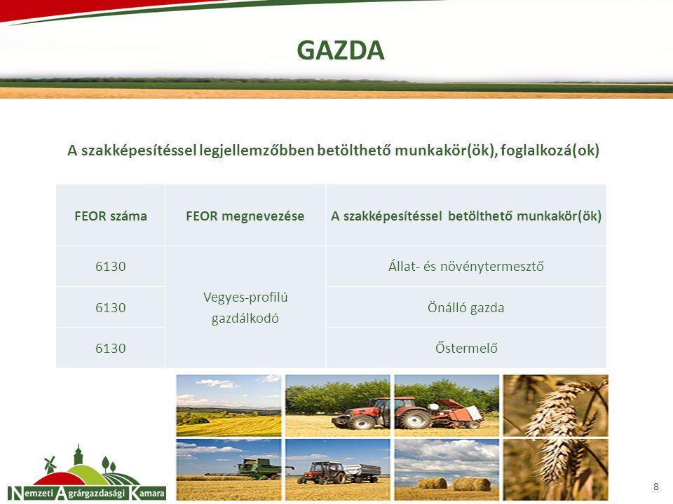GAZDA 8 FEOR számaFEOR megnevezése A szakképesítéssel betölthető munkakör(ök) 6130 Vegyes-profilú gazdálkodó Állat- és növénytermesztő 6130Önálló gazda 6130Őstermelő A szakképesítéssel legjellemzőbben betölthető munkakör(ök), foglalkozá(ok)