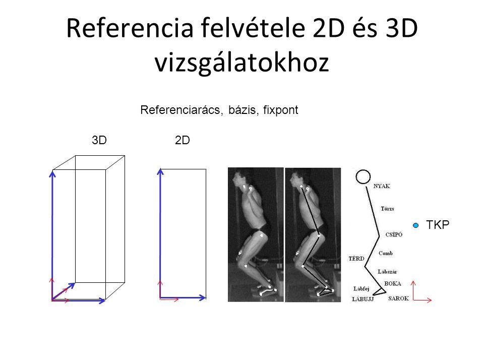 Referencia felvétele 2D és 3D vizsgálatokhoz Referenciarács, bázis, fixpont 3D2D TKP
