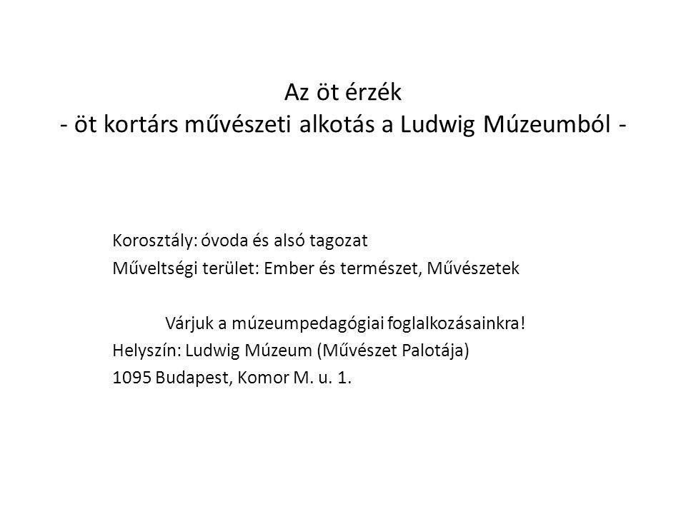 Használati útmutató A diasor a Ludwig Múzeum Az öt érzék című múzeumpedagógiai foglalkozás előkészítéséhez (a programba ezek az alkotások szerepelnek, más feladatok kiegészítésével), de a rajz és a környezetismeret órák színesítésére is alkalmas.