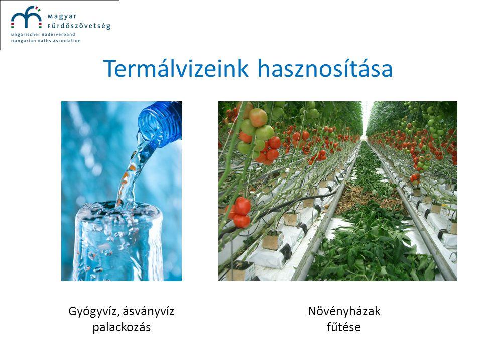 Termálvizeink hasznosítása Gyógyvíz, ásványvíz palackozás Növényházak fűtése