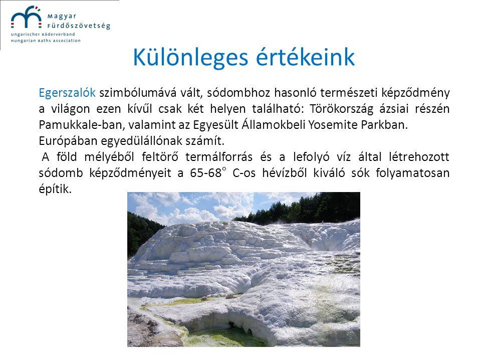 Különleges értékeink Egerszalók szimbólumává vált, sódombhoz hasonló természeti képződmény a világon ezen kívűl csak két helyen található: Törökország
