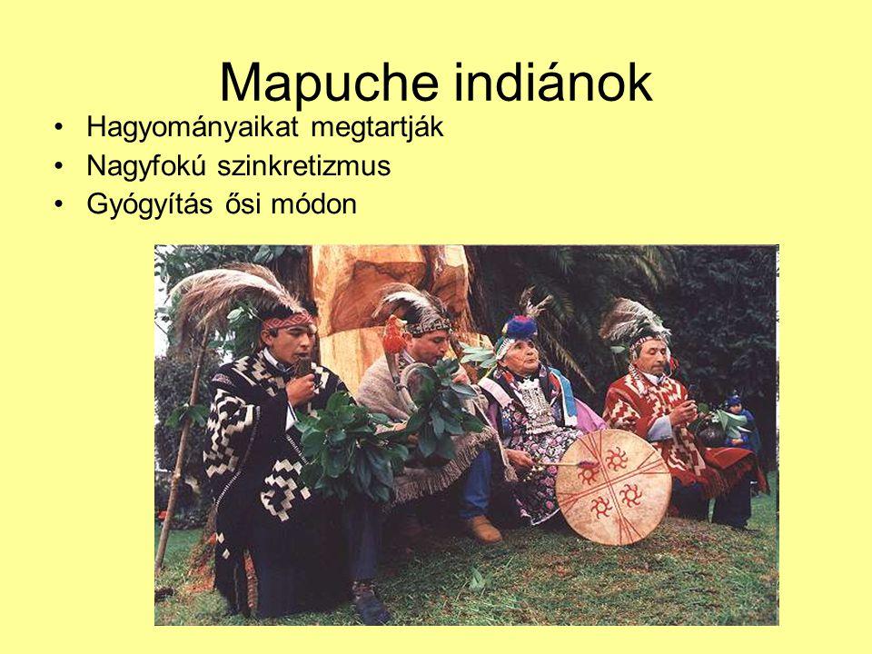 Mapuche indiánok Hagyományaikat megtartják Nagyfokú szinkretizmus Gyógyítás ősi módon