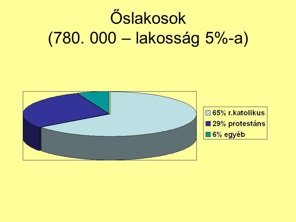 Őslakosok (780. 000 – lakosság 5%-a)