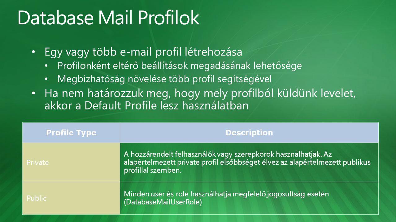 Profile TypeDescription Private A hozzárendelt felhasználók vagy szerepkörök használhatják. Az alapértelmezett private profil elsőbbséget élvez az ala