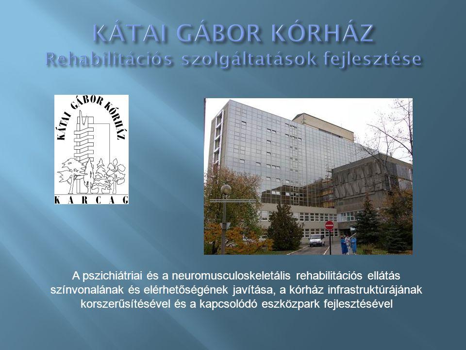 A pszichiátriai és a neuromusculoskeletális rehabilitációs ellátás színvonalának és elérhetőségének javítása, a kórház infrastruktúrájának korszerűsítésével és a kapcsolódó eszközpark fejlesztésével