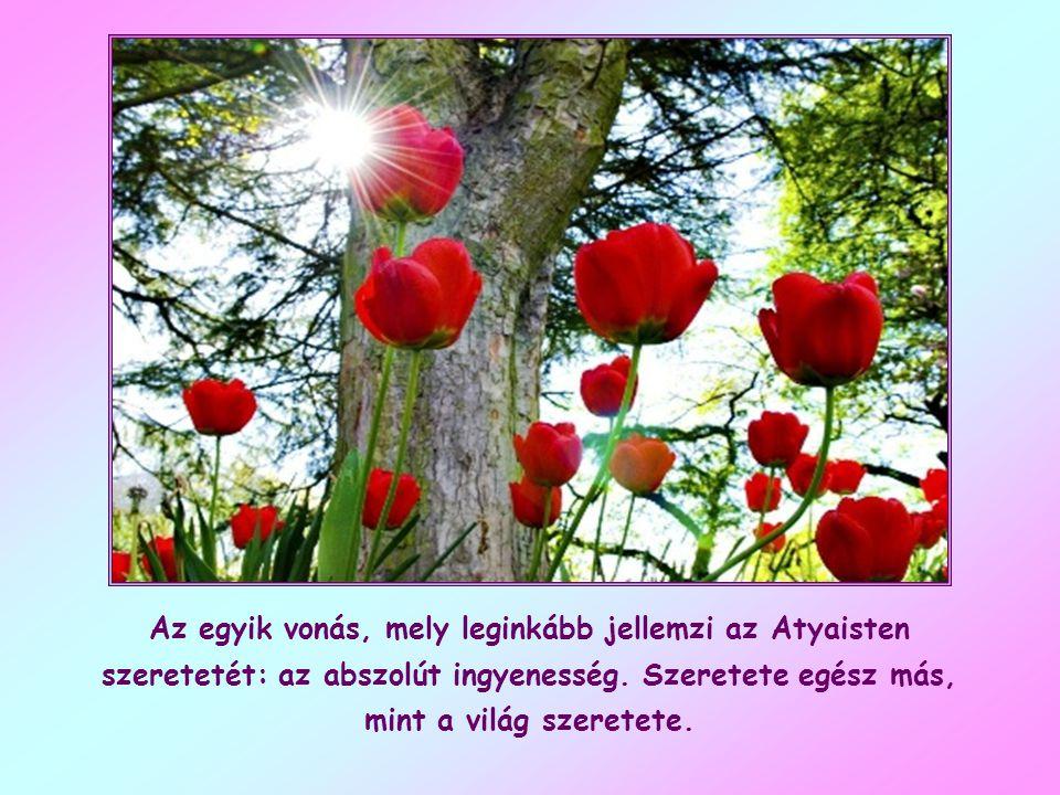 """""""Ha azokat szeretitek, akik szeretnek titeket, mi a jutalmatok? Hiszen a bűnösök is szeretik azokat, akik őket szeretik."""""""
