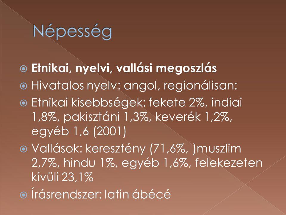  Etnikai, nyelvi, vallási megoszlás  Hivatalos nyelv: angol, regionálisan:  Etnikai kisebbségek: fekete 2%, indiai 1,8%, pakisztáni 1,3%, keverék 1,2%, egyéb 1,6 (2001)  Vallások: keresztény (71,6%, )muszlim 2,7%, hindu 1%, egyéb 1,6%, felekezeten kívüli 23,1%  Írásrendszer: latin ábécé