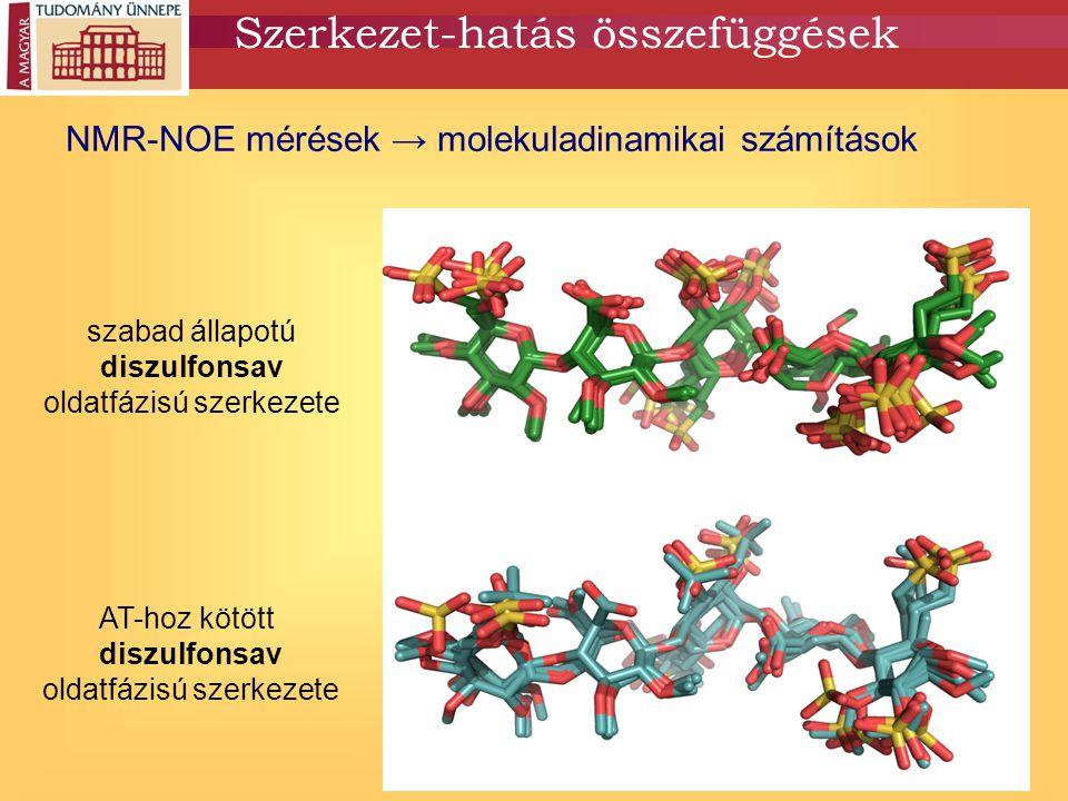 Szerkezet-hatás összefüggések NMR-NOE mérések → molekuladinamikai számítások szabad állapotú diszulfonsav oldatfázisú szerkezete AT-hoz kötött diszulf