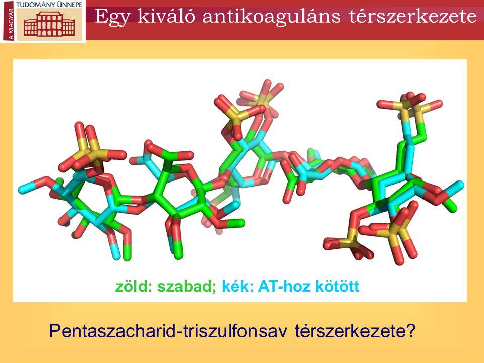 Egy kiváló antikoaguláns térszerkezete Pentaszacharid-triszulfonsav térszerkezete? zöld: szabad; kék: AT-hoz kötött