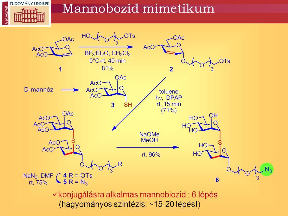 Önszerveződő mannobiozid ligandum 1.Sz. Tollas et al.