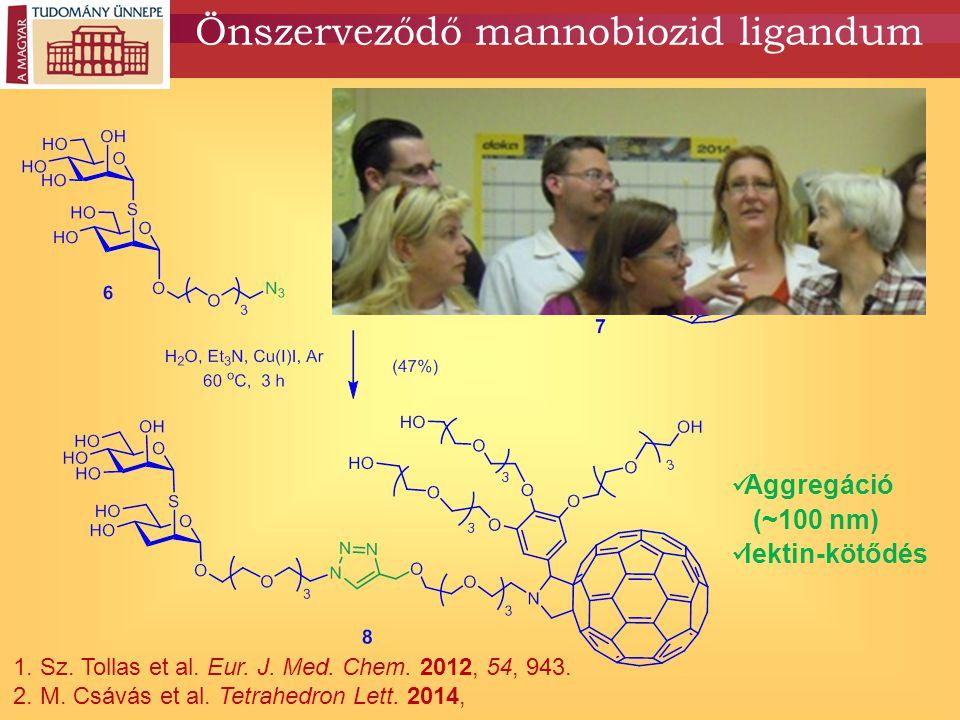 Önszerveződő mannobiozid ligandum 1. Sz. Tollas et al. Eur. J. Med. Chem. 2012, 54, 943. 2. M. Csávás et al. Tetrahedron Lett. 2014, Aggregáció (~100