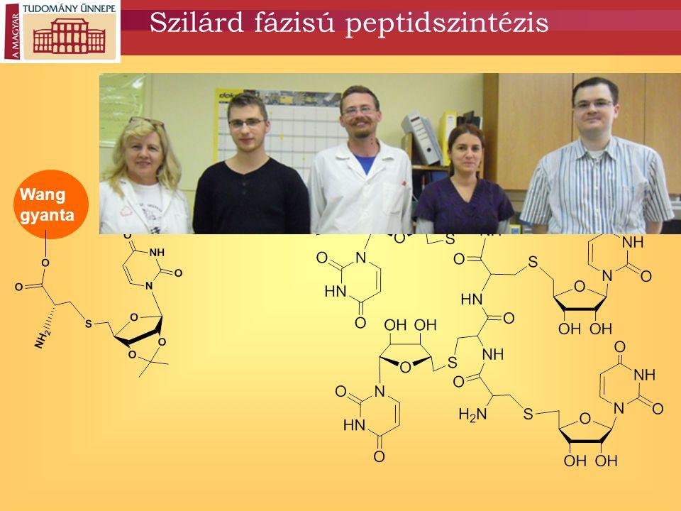 Wang gyanta Szilárd fázisú peptidszintézis a)Fmoc hasítás b)Peptidkötés 4 ciklus c) CF 3 COOH