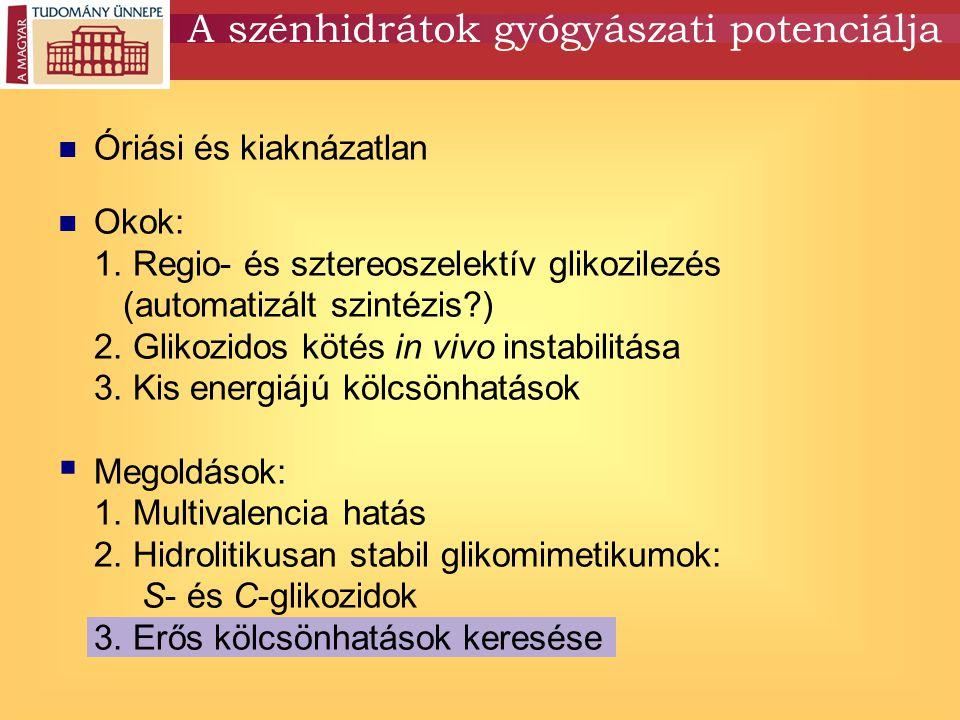Óriási és kiaknázatlan Okok: 1. Regio- és sztereoszelektív glikozilezés (automatizált szintézis?) 2. Glikozidos kötés in vivo instabilitása 3. Kis ene