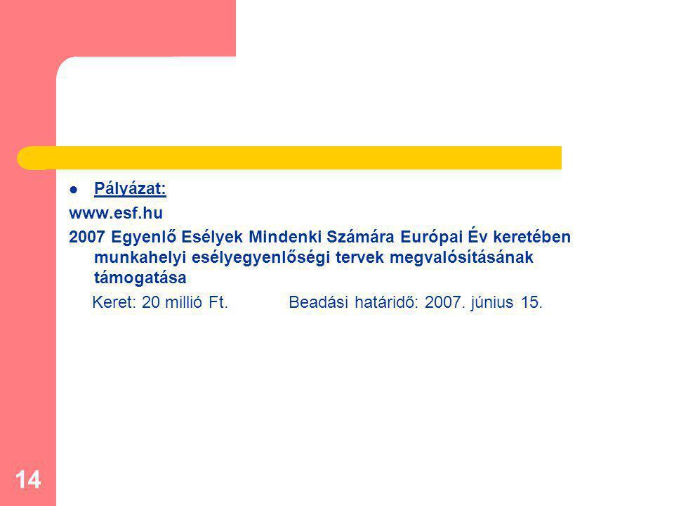 14 Pályázat: www.esf.hu 2007 Egyenlő Esélyek Mindenki Számára Európai Év keretében munkahelyi esélyegyenlőségi tervek megvalósításának támogatása Keret: 20 millió Ft.