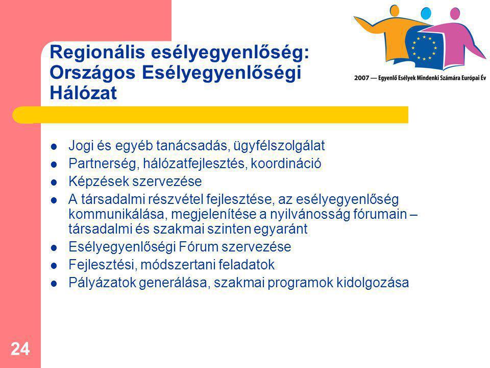 24 Regionális esélyegyenlőség: Országos Esélyegyenlőségi Hálózat Jogi és egyéb tanácsadás, ügyfélszolgálat Partnerség, hálózatfejlesztés, koordináció Képzések szervezése A társadalmi részvétel fejlesztése, az esélyegyenlőség kommunikálása, megjelenítése a nyilvánosság fórumain – társadalmi és szakmai szinten egyaránt Esélyegyenlőségi Fórum szervezése Fejlesztési, módszertani feladatok Pályázatok generálása, szakmai programok kidolgozása