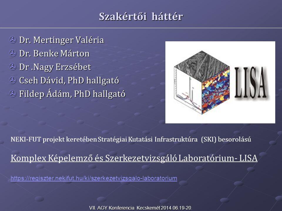 Szakértői háttér  Dr. Mertinger Valéria  Dr. Benke Márton  Dr.Nagy Erzsébet  Cseh Dávid, PhD hallgató  Fildep Ádám, PhD hallgató NEKI-FUT projekt
