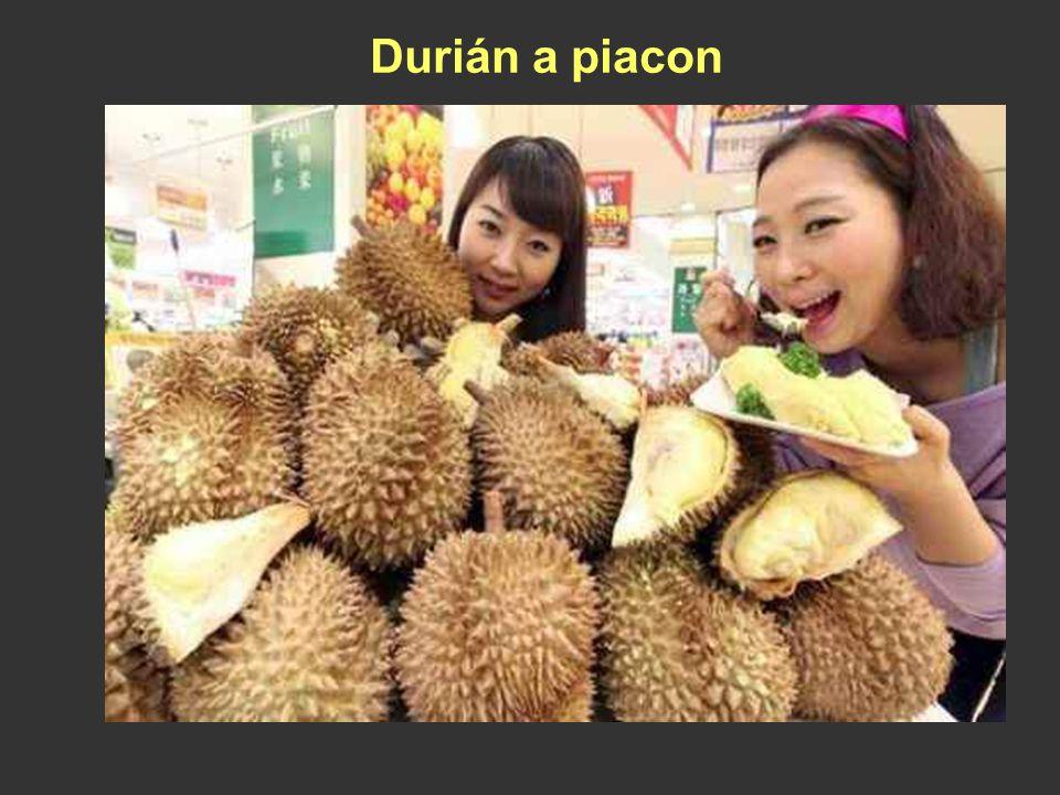 Durián (Durio zibethinus) Délkelet-Ázsia trópusi esőerdeiben honos. A Maláj - félszigeten és Indonéziában termesztik. Az erős szagú terméseket rövidde