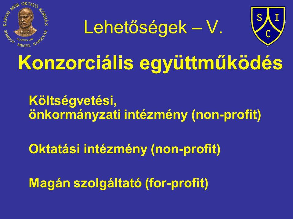 Lehetőségek – V. Konzorciális együttműködés Költségvetési, önkormányzati intézmény (non-profit) Oktatási intézmény (non-profit) Magán szolgáltató (for