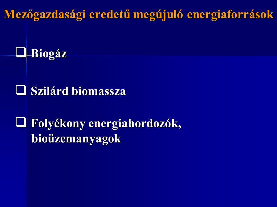 Mezőgazdasági eredetű megújuló energiaforrások  Biogáz  Szilárd biomassza  Folyékony energiahordozók, bioüzemanyagok