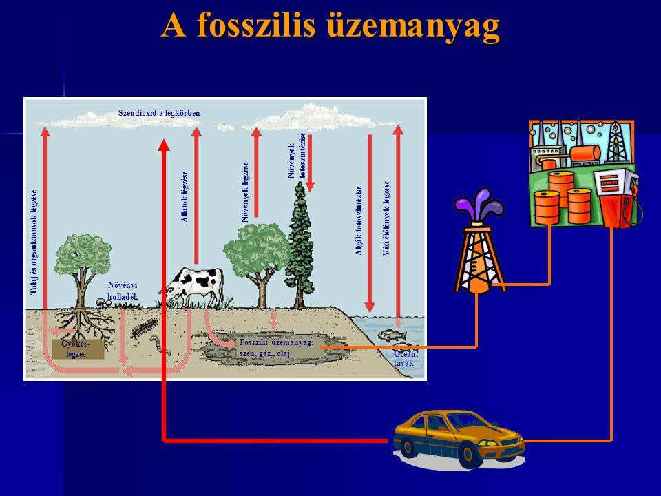 A fosszilis üzemanyag Széndioxid a légkörben Óceán, tavak Gyökér- légzés Fosszilis üzemanyag: szén, gáz,, olaj Növényi hulladék Talaj és organizmusok