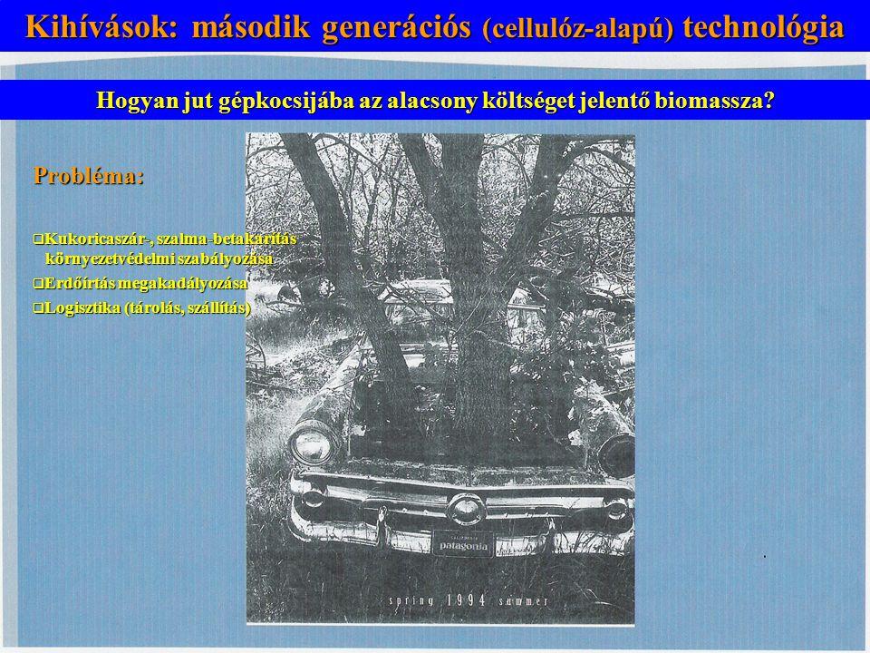 Kihívások: második generációs technológia Hogyan jut gépkocsijába az alacsony költséget jelentő biomassza? Kihívások: második generációs (cellulóz-ala