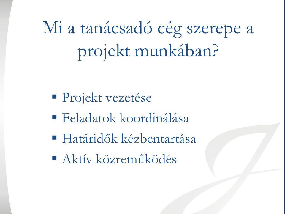 Mi a tanácsadó cég szerepe a projekt munkában?  Projekt vezetése  Feladatok koordinálása  Határidők kézbentartása  Aktív közreműködés