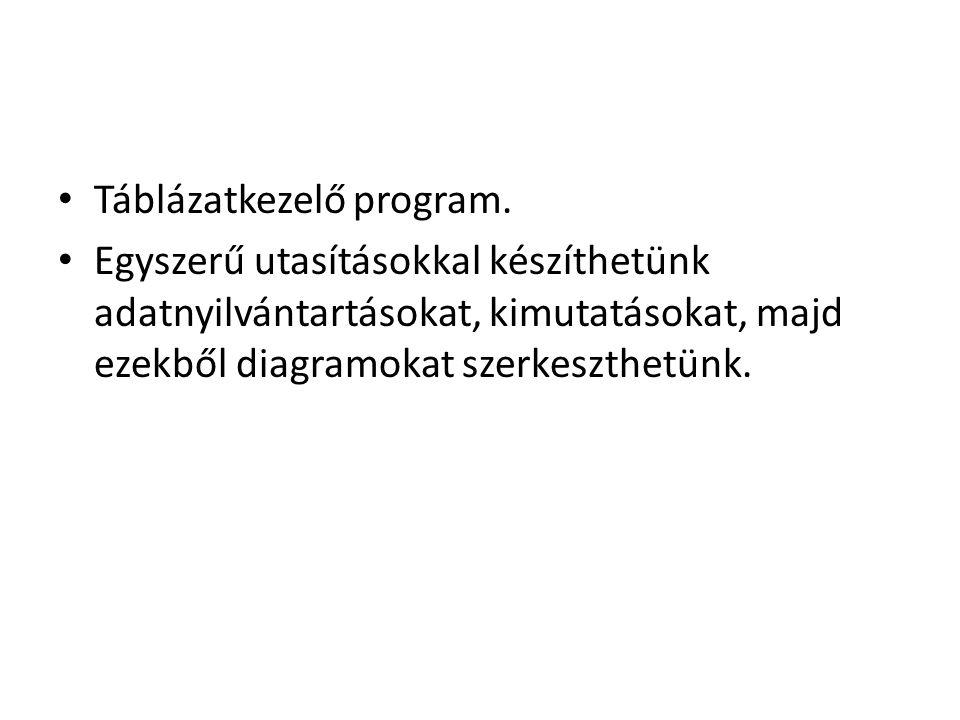 Táblázatkezelő program.