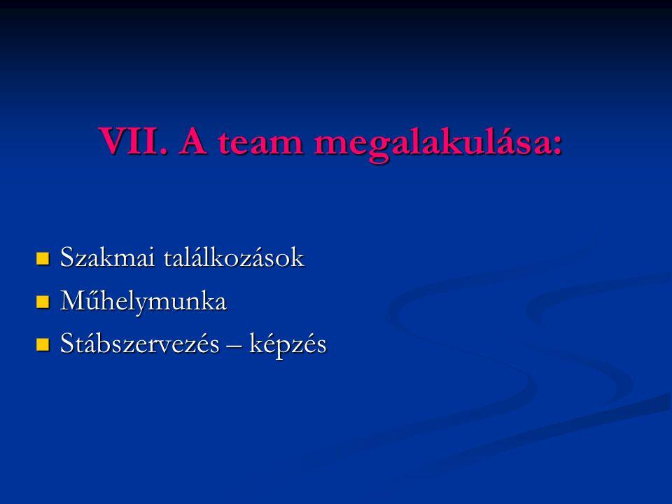 VII. A team megalakulása: Szakmai találkozások Szakmai találkozások Műhelymunka Műhelymunka Stábszervezés – képzés Stábszervezés – képzés